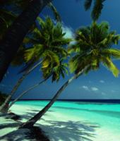 Ile du Pacifique